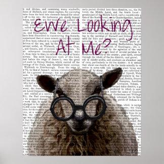 Poster Brebis me regardant moutons de DeNiro