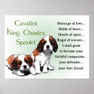 Poster Cadeaux cavaliers d'épagneul du Roi Charles