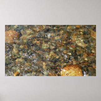 Poster Cailloux Rivière-Usés Brown et résumé naturel gris