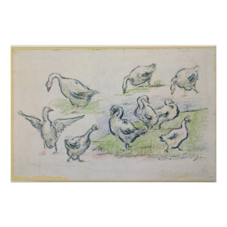 Poster Canards d'Alfred Sisley  