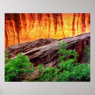 Poster Canyon et feuillage au néon | Utah d'Escalante