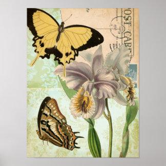 Poster Carte postale vintage avec des papillons et des