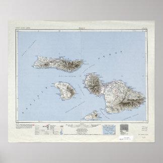 Poster Carte topographique vintage de Maui Hawaï