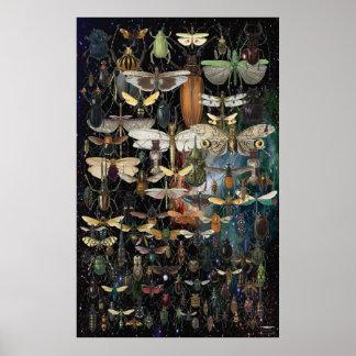 Poster cascade d'insectes et de papillons