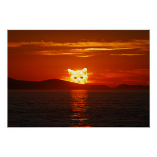 POSTER CAT SOLAIRE