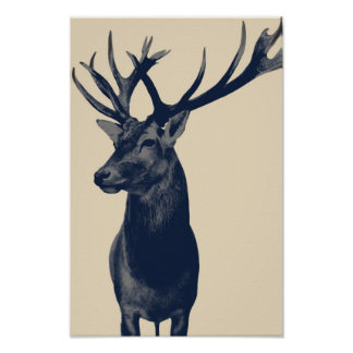 Poster Cerf