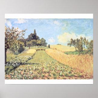 Poster Champ de blé d'Alfred Sisley |