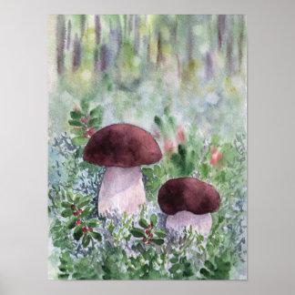 Poster Champignon de Porcini dans une forêt
