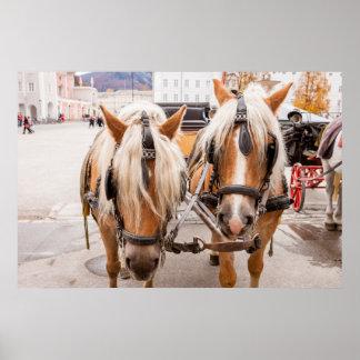 Poster Chariot   Autriche de cheval