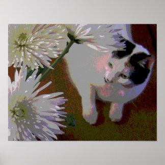Poster Chat avec la copie de beaux-arts de chrysanthèmes