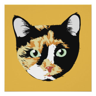 Poster Chat de calicot Bonita