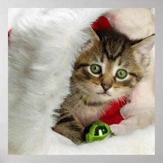 Poster Chat de Noël - chat de chaton - chats mignons