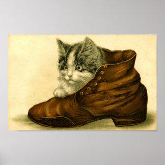 Poster Chaton vintage en affiche de chaussure