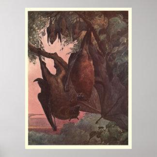 Poster Chauve-souris vintage Painting (1909)