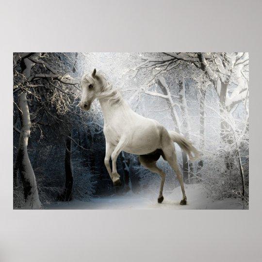 Poster cheval blanc dans la neige