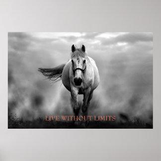 Poster Cheval de motivation blanc noir vivant sans