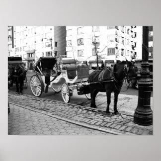 Poster Cheval de NYC et affiche blanche noire de photo de