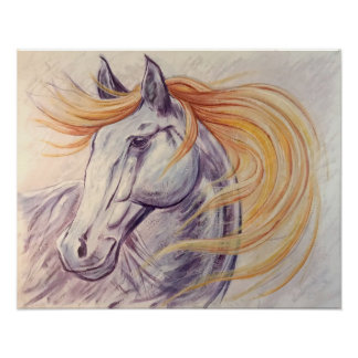 Poster Cheval paisible