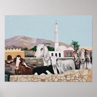 Poster Chèvres de Dahab