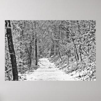 Poster Chutes de neige sur la traînée B&W de forêt