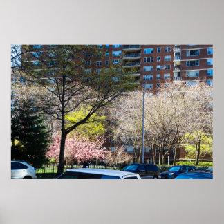 Poster cinquante-neuvième Sud de Central Park de rue