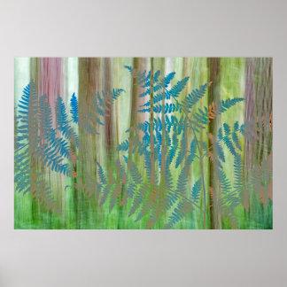Poster Collage des fougères et de la forêt | Seabeck, WA