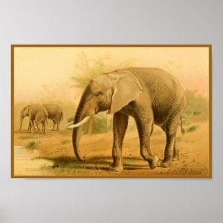 Poster Copie animale vintage d'art d'éléphants africains