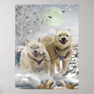 Poster Copie de scène d'hiver de chien de traîneau sibéri