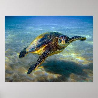 Poster Copie de tortue de mer de Leatherneck