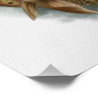 Poster Copie de truite impitoyable de Yellowstone
