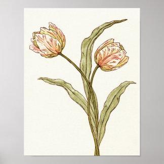 Poster Copie de tulipes de rose en pastel