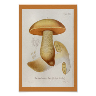 Poster Copie jaune-orange d'art de champignons du cru