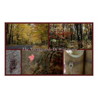 Poster Copie Northwoods le Wisconsin de collage de nature