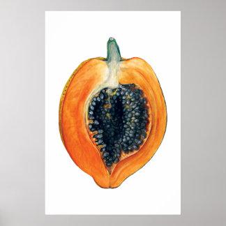 Poster Copie orange de fruit botanique de PAPAYE