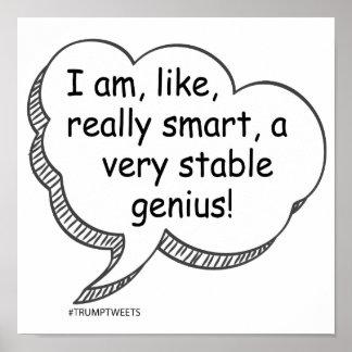 Poster Copie stable de génie