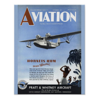 Poster Copie vintage d'art de couverture d'avion de