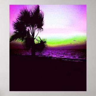 Poster Coucher du soleil tropical