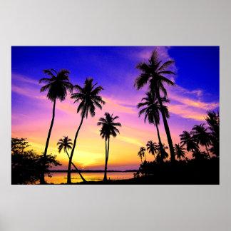 Poster Coucher du soleil tropical d'île au-dessus du Sri