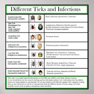 Poster Coutils et diagramme différents d'infections