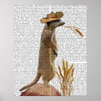 Poster Cowboy de Meerkat