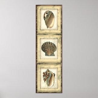 Poster Créatures de mer par le rivage