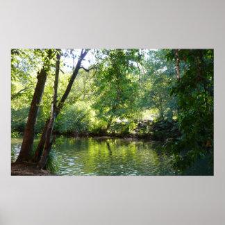 Poster Crique I de chêne dans la photographie de nature