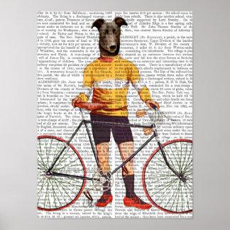 Poster Cycliste de lévrier