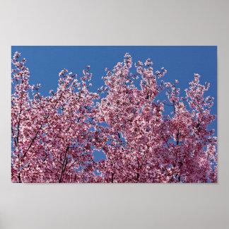 Poster Dans la tuile japonaise bleue de fleurs de
