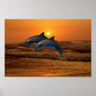 Poster Dauphin de Bottlenose au coucher du soleil