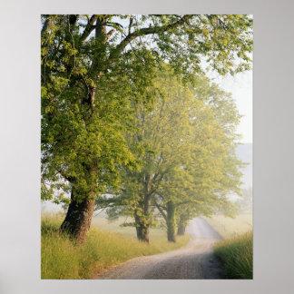 Poster De Cades grandes Smokey montagnes de la crique |,