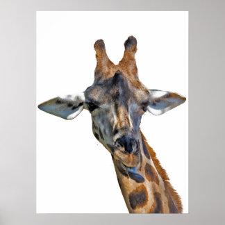 Poster de Girafe