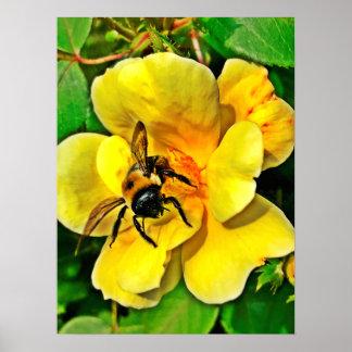 Poster Défi d'abeille