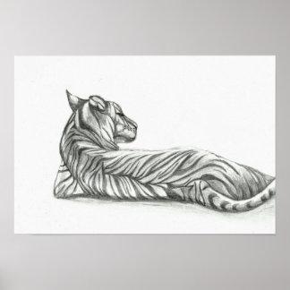 Poster Dessin de repos de tigre