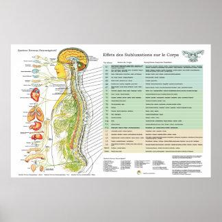 Poster Diagramme français de chiropractie d'effets de